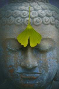 meditationer til særligt sensitive